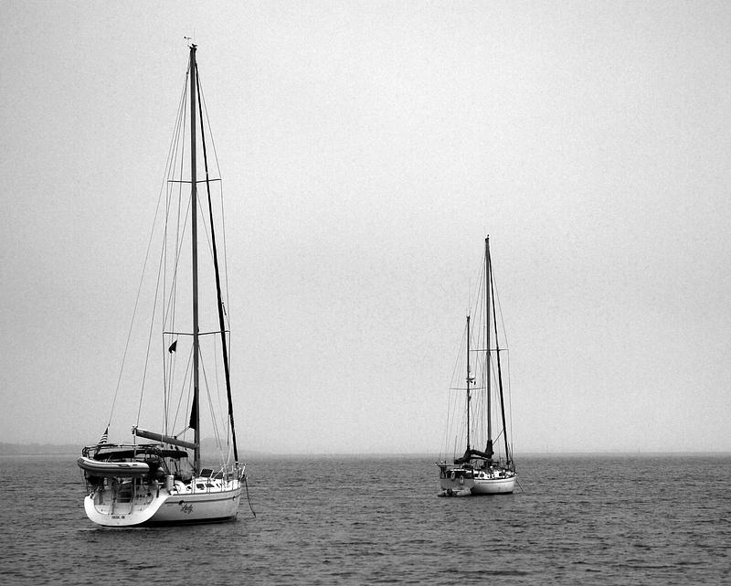 Cumberland_Island_II-16