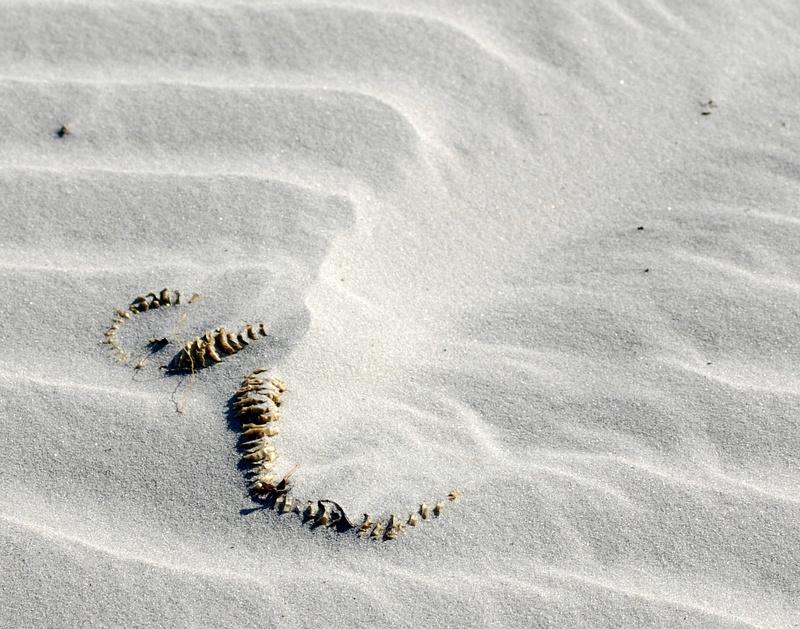 Dead_Sand