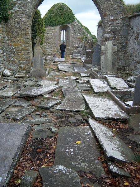 Ireland Trip 101 by Carol Alexander
