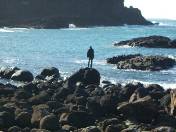 Ireland Trip 171 by Carol Alexander