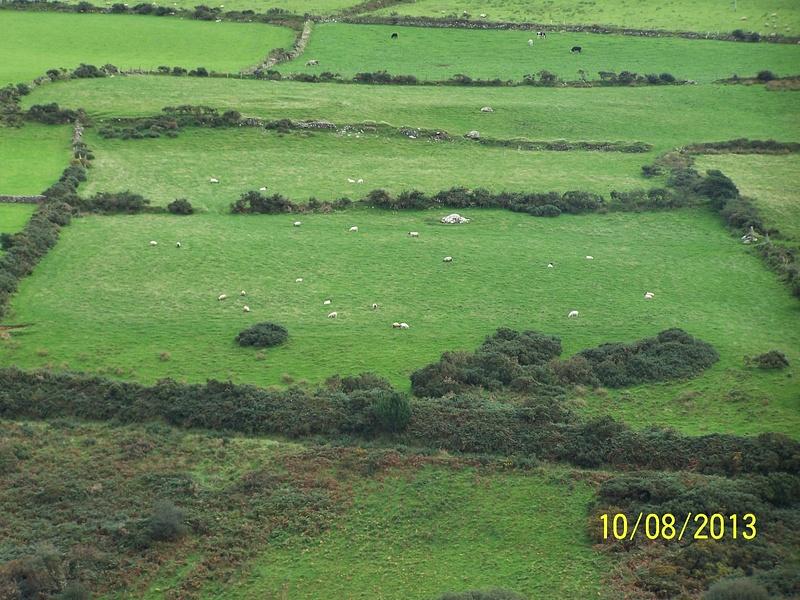 Ireland Trip 086