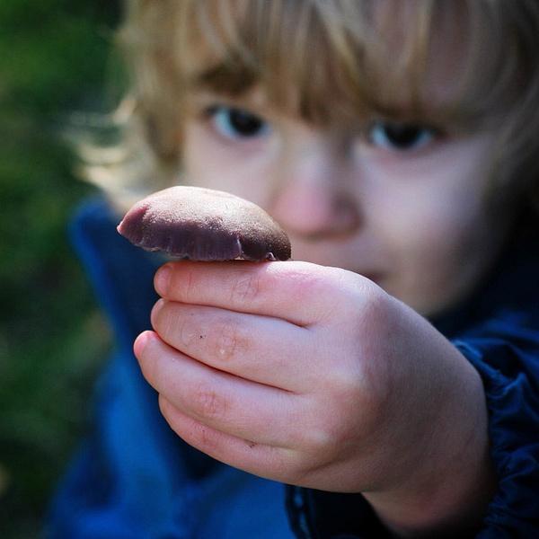 mushroom boy by LeslieElliott