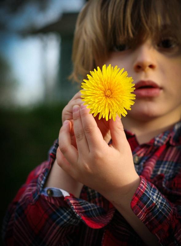 flower child 01