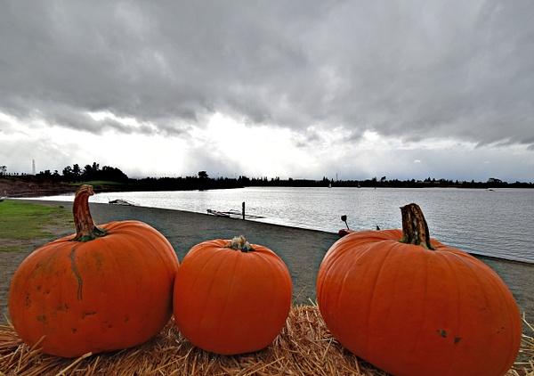 Autumn by Nokhum Markushevich