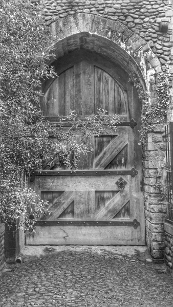 The Door by BryanThomas