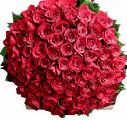 bunch of red roses by Karachigifts