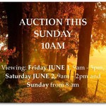 Gippy Auction June 2018