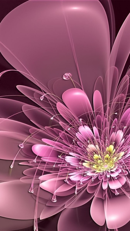 iPhone photo SP_12653268