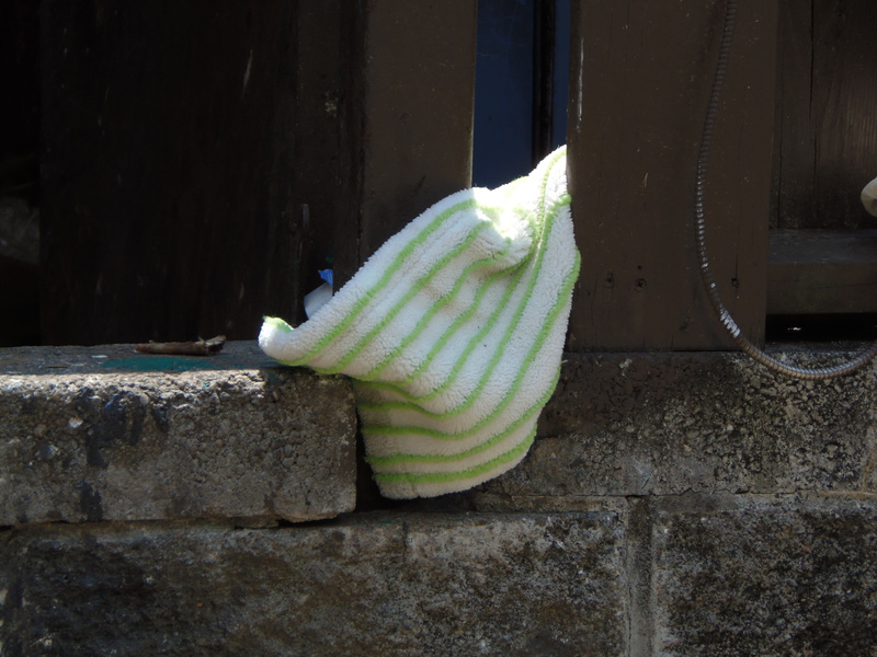 Lonely towel