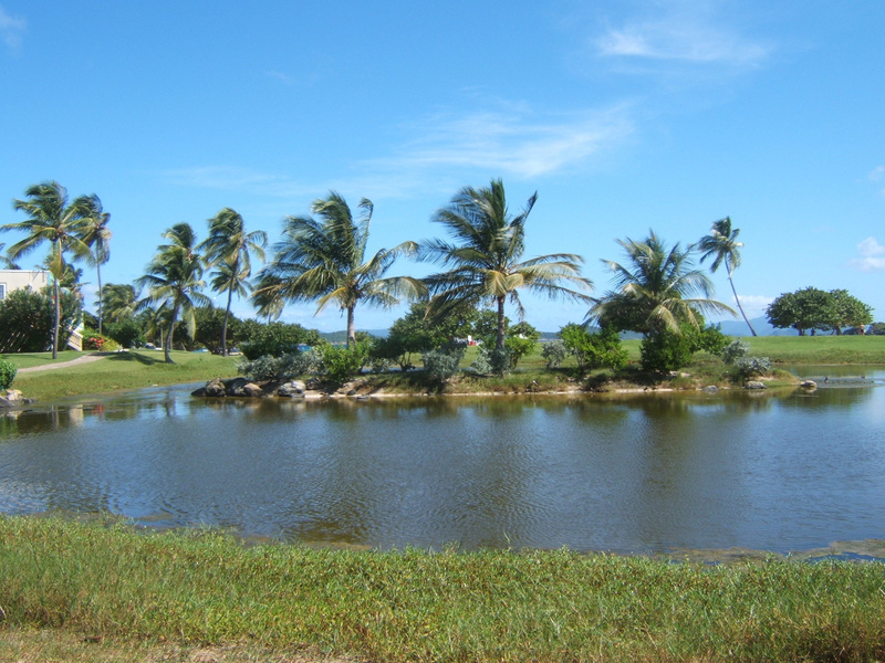 The island in the pond, the beach is beyond the pond