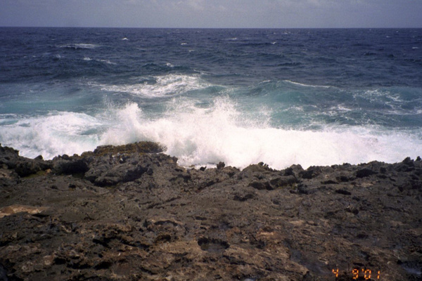 Waves on the windward side by Vernon Adams