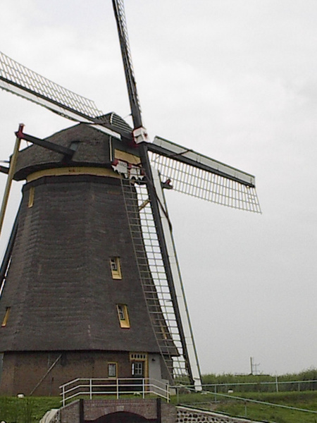 Windmill (Kinderdijk) by Vernon Adams