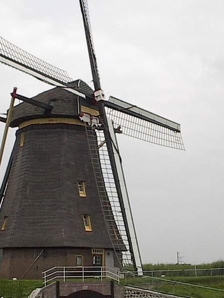 Windmill (Kinderdijk)