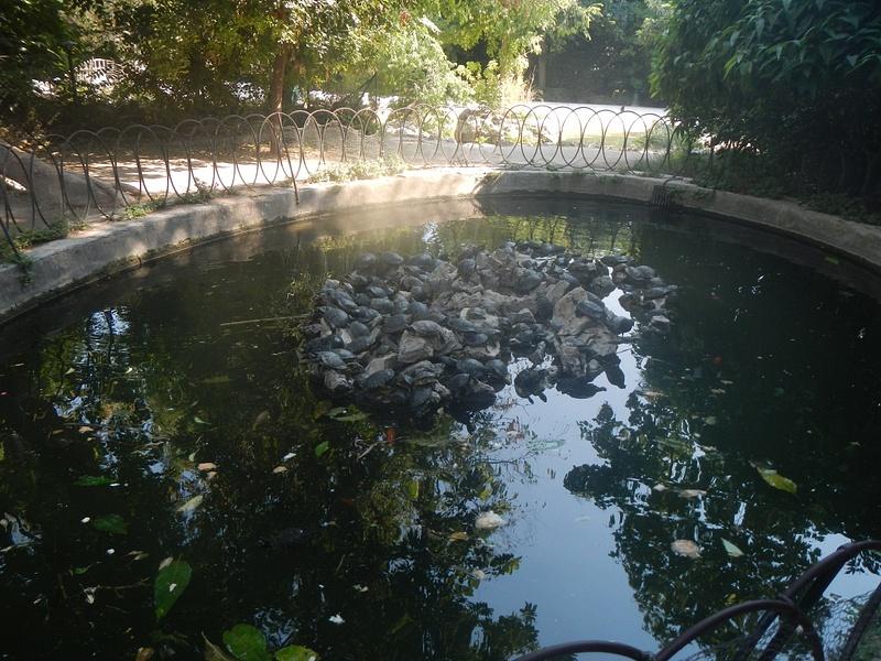 Athens Botanical Garden