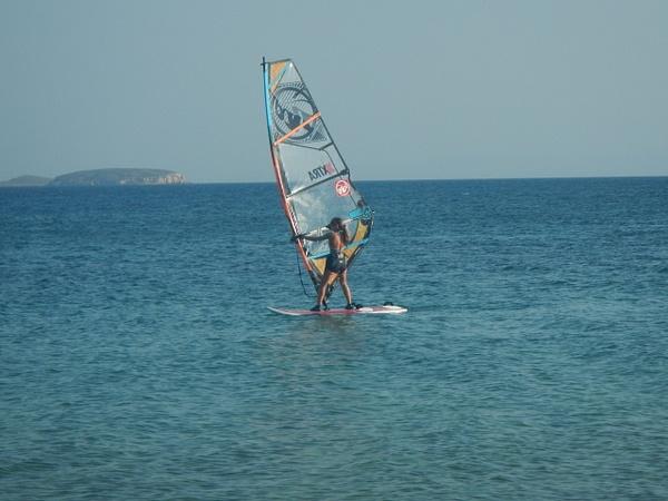 Windsurfer by Vernon Adams