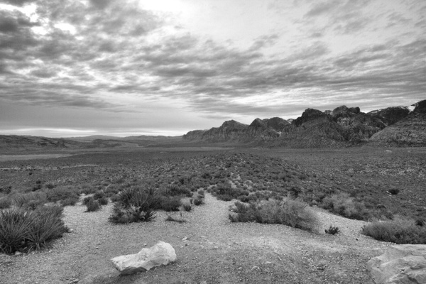 Red Rock Canyon by Vernon Adams