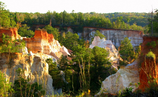 Providence Canyon by Vernon Adams