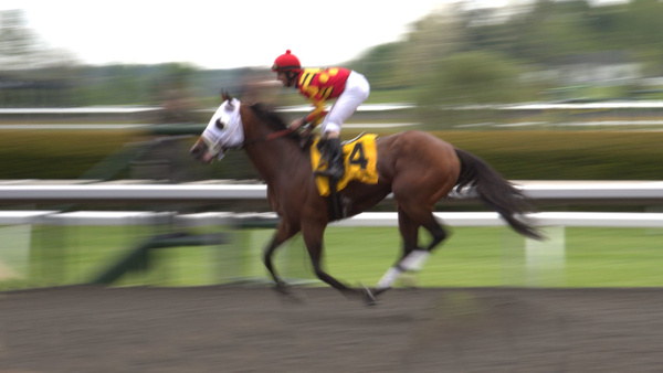 Keeneland by Vernon Adams