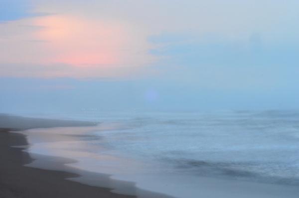 DSC_0223 by Joe Lerdal '17