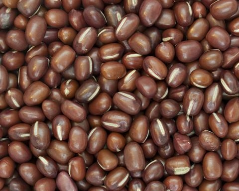 ADZUKI BEANS by EarthyLiving