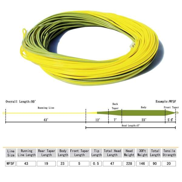 Weight Forward EB Series Fly Line