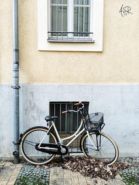 La Bicicleta by Alejandro Solórzano