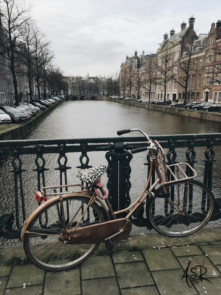 Beach Cruiser, Amsterdam. by Alejandro Solórzano