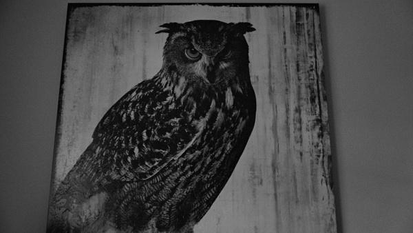 black and white 067 by PaulinaNunez
