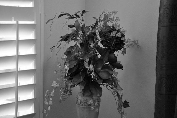 vase by AceAbucayP1