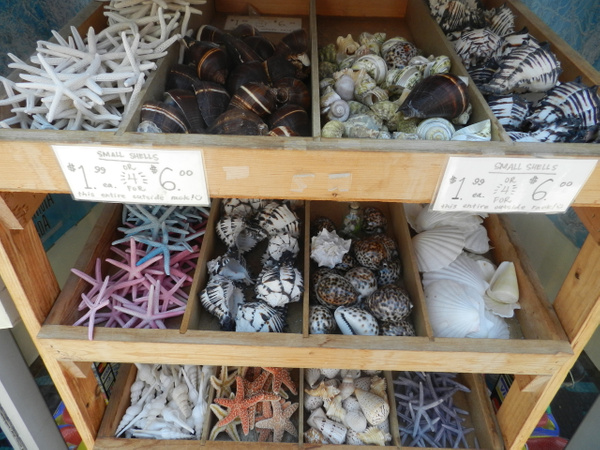 022 by Isabellamp1