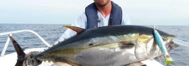 Loreto Mexico Fishing