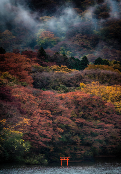 20151108_hakone_jinya_final_0031 by FotoClaveGallery