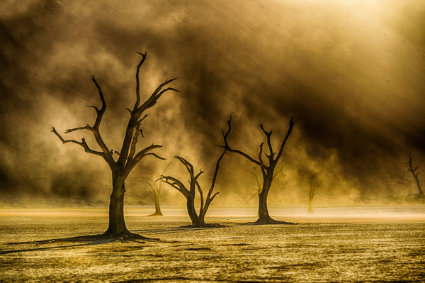 20141116_deadvlei_0061-Edit by FotoClaveGallery