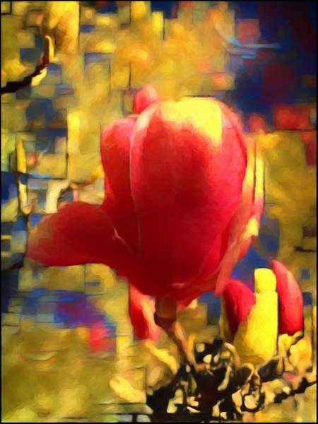 Red Tulip abstract 1