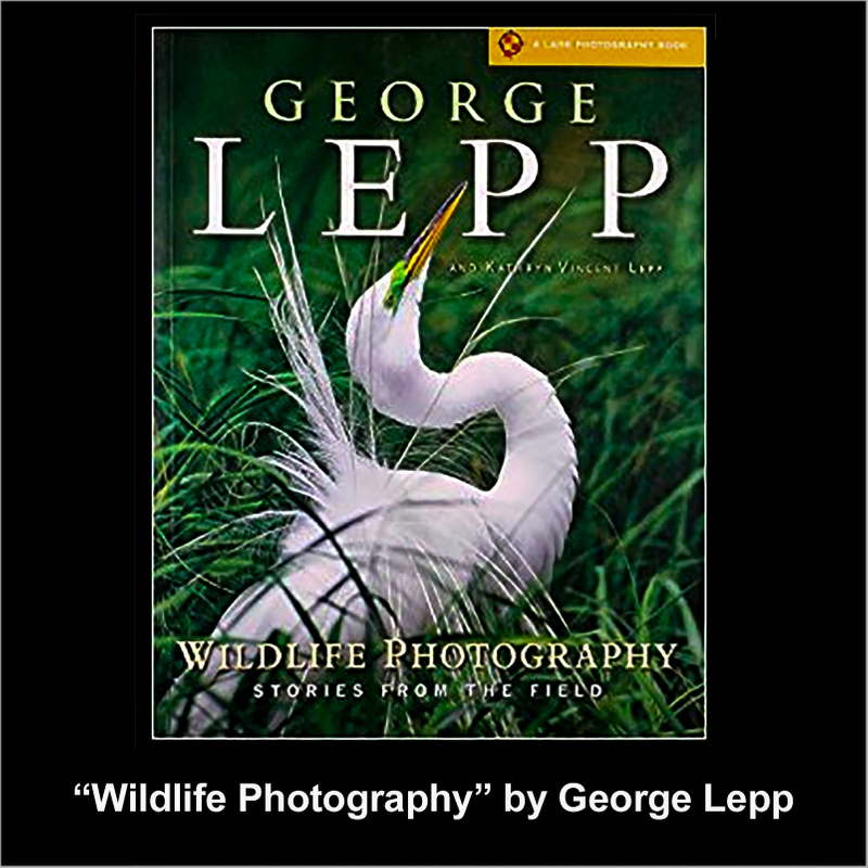 George Lepp Wildlife Photography