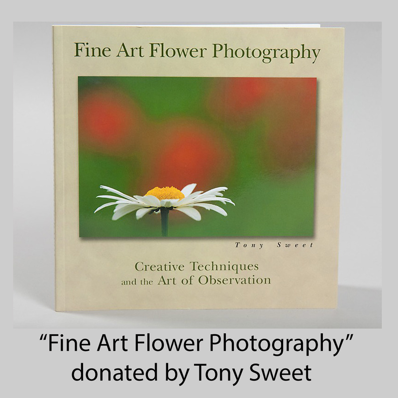 Fine Art Flower Photograpy