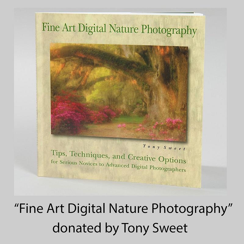 Fine Art Digital Photography
