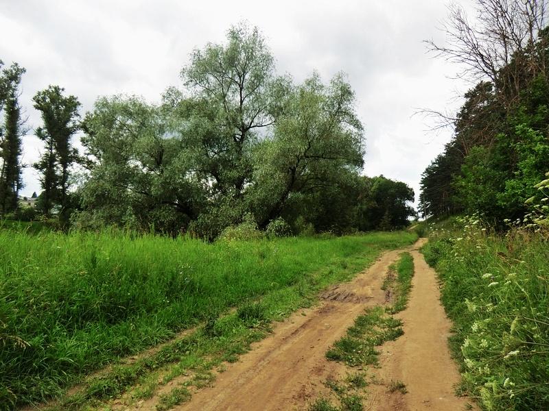 Suburban path