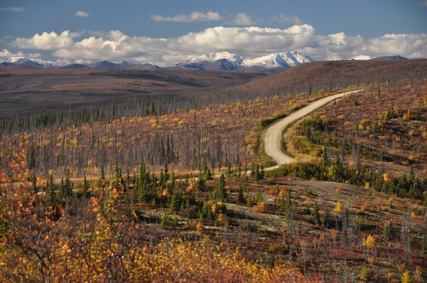 Steese Highway by WillWright by WillWright