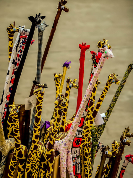 girafas (1 of 1) by WaldirHannemann