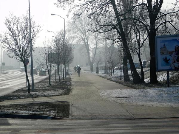 DSCN2669 by PrzemekRybak