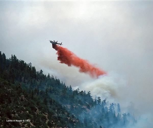 1977 Mt. Elden Fire, Flagstaff by ArizonaLorne