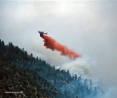 1977 Mt. Elden Fire, Flagstaff