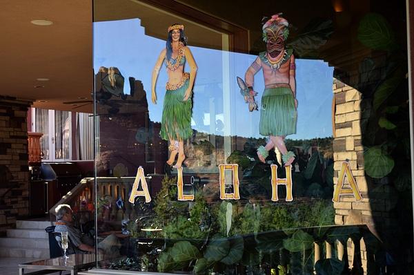 Luau at Verryl & Sharon's by ArizonaLorne