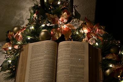 2013 Christmas at the Noyes'