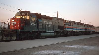 1981 Phoenix