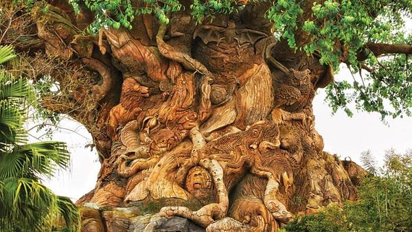 Disney's Animal Kingdom by AudreyMyre