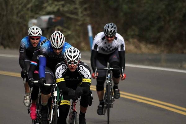 VertebrataCycling Portfolio