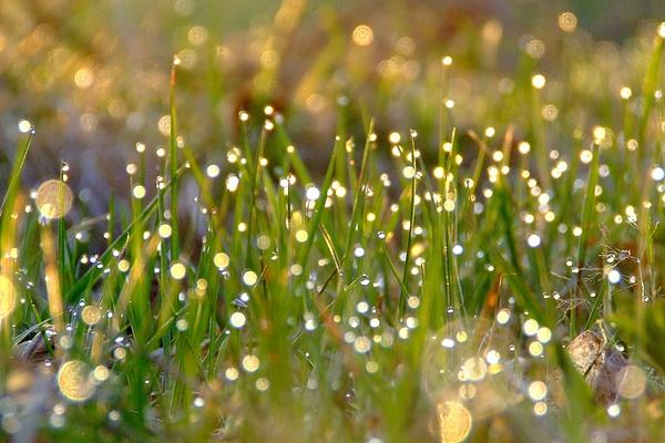 2012 - fairytale by annagorna