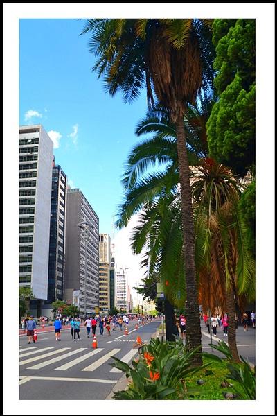 Aveida Paulista--02-04-2017 (278 (156) by marcomachado